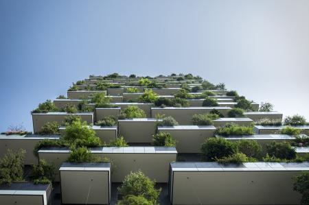 Brno dává zelenou dotacím pro zelené střechy